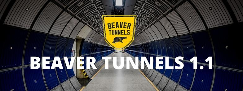 beaver_tunnels_1.1