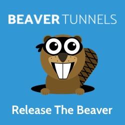 Beaver Tunnels - Release The Beaver